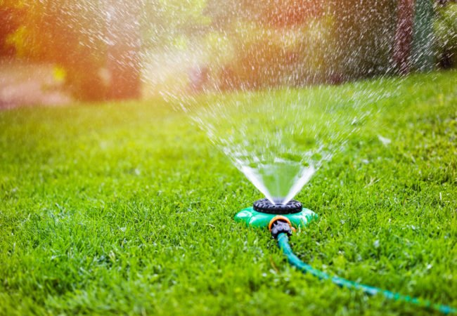 Lawn Maintenance for Early Spring and Summer