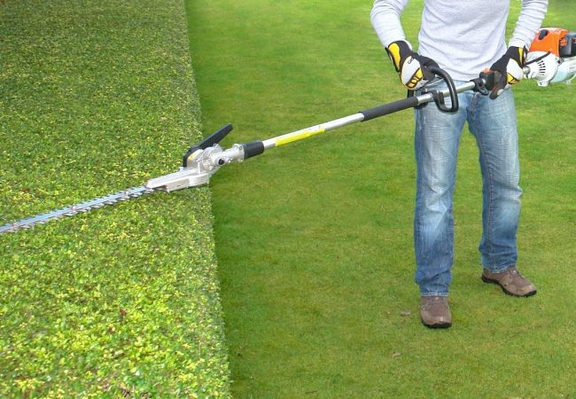 Best Pole Hedge Trimmers: Ultimate Buyer's Guide for 2021