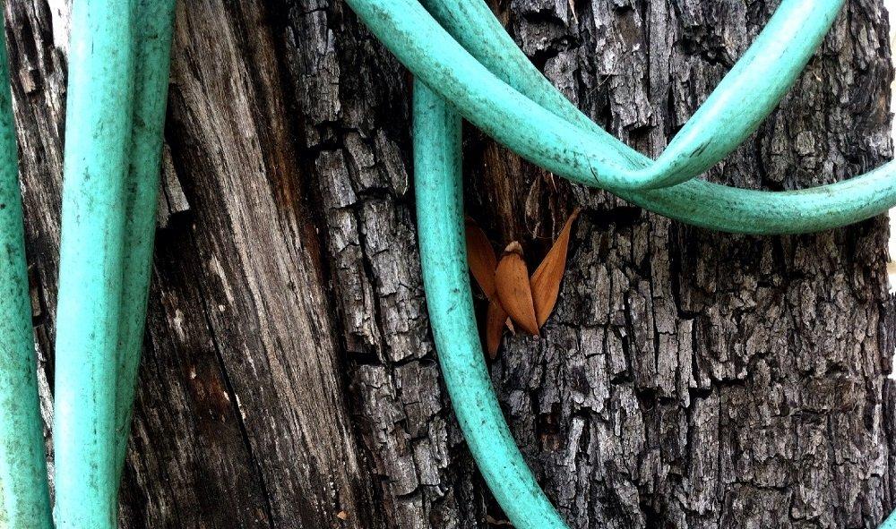 Close-up Of Garden Hose
